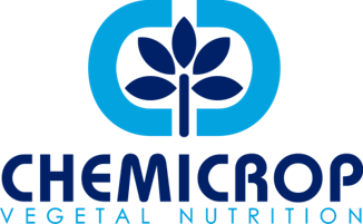 CHEMICROP: Fertilizers and Solutions for Vegetal Nutrition.